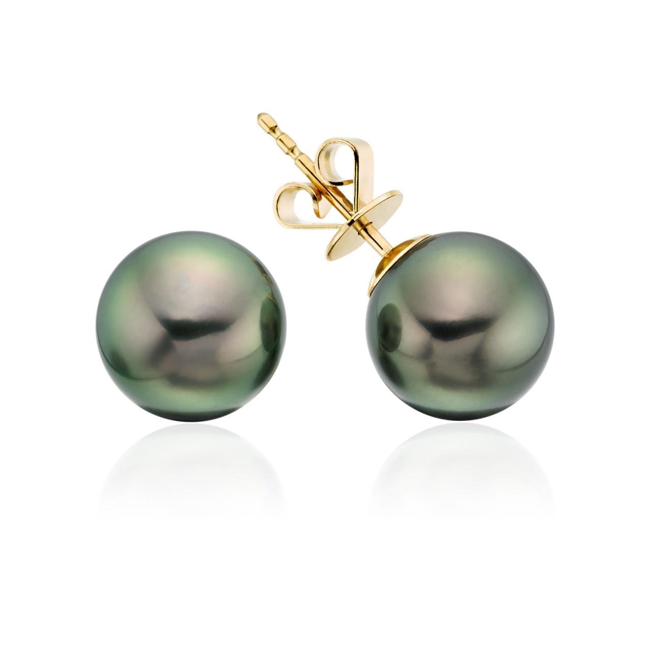 Peacock Tahitian Pearl Earrings in 18ct Yellow Gold-1