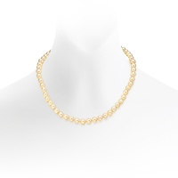 Golden Akoya Pearl Necklace with 18ct Yellow Gold Clasp