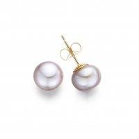 Pink Button Freshwater Pearl Stud Earrings in Yellow Gold