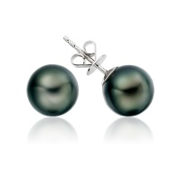 Black Tahitian Pearl Stud Earrings in White Gold