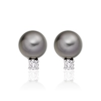 Tahitian Pearl and Diamond Stud Earrings in 18ct White Gold