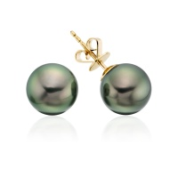 Peacock Tahitian Pearl Stud Earrings in Yellow Gold
