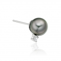 Tahitian Pearl and Diamond Stud Earrings in 18ct White Gold - TEGRWG0619-2